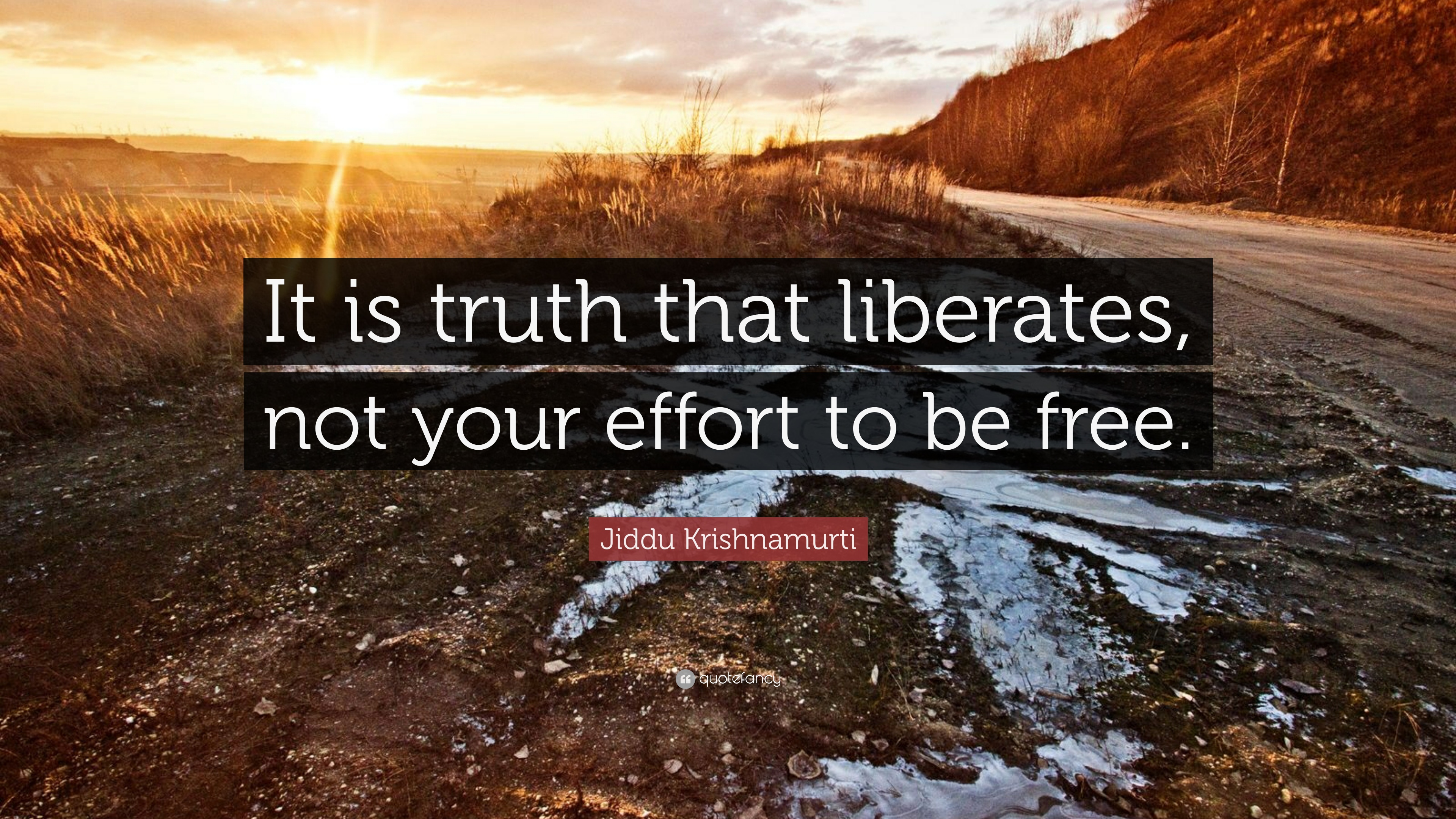 Jiddu-Krishnamurti-Quote-It-is-truth-that-liberates-not-your